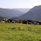 Asiago-20120909-00021